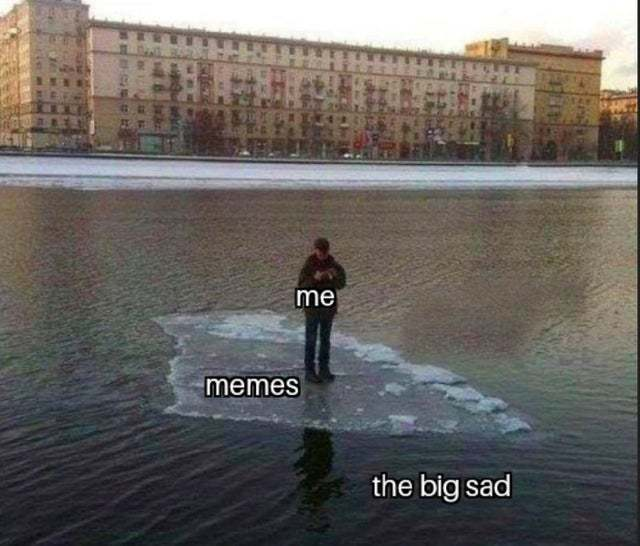 Memes vs the big sad
