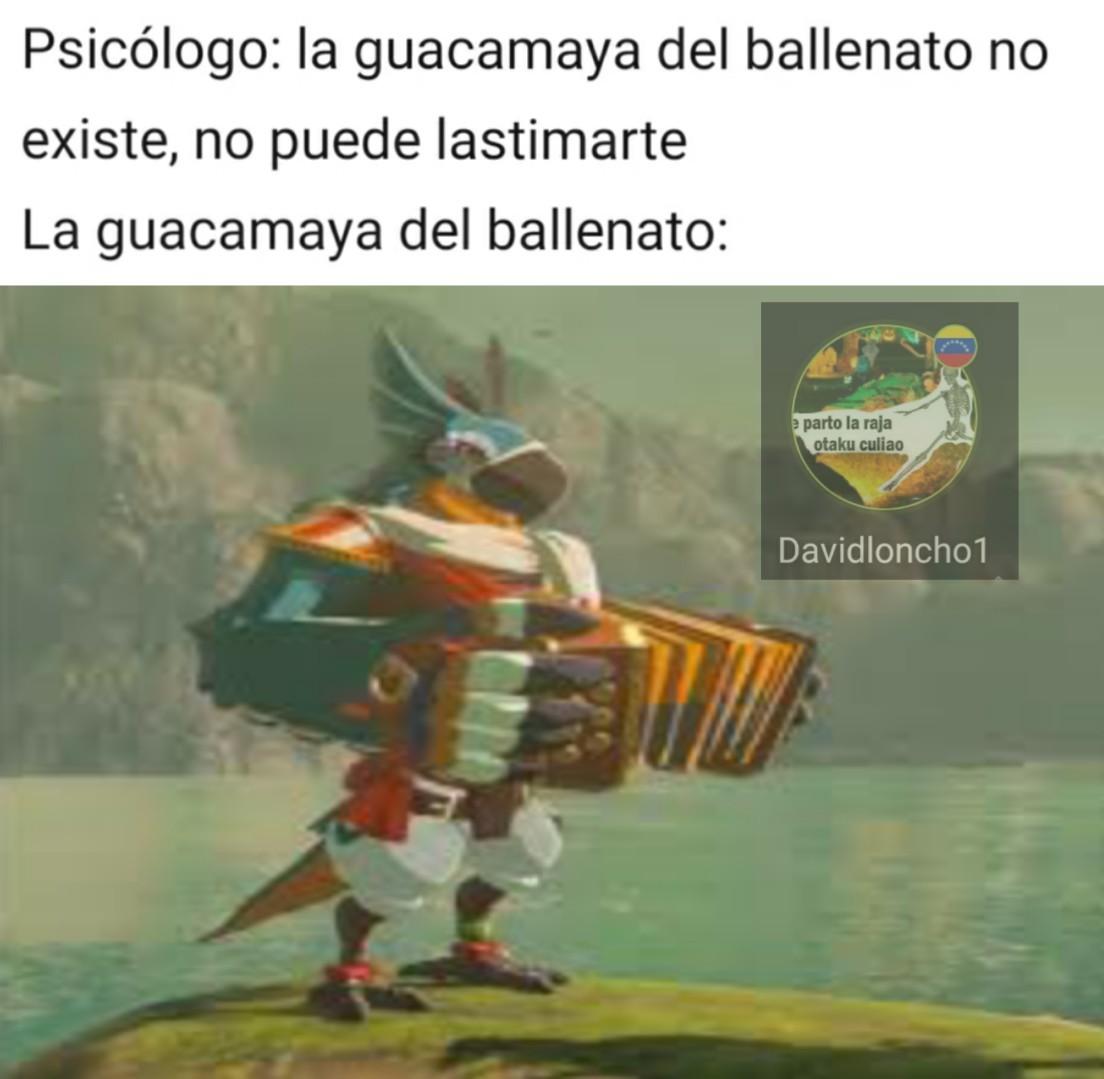 El que no sepa que es una guacamaya, es como una especie de loro de Venezuela - meme