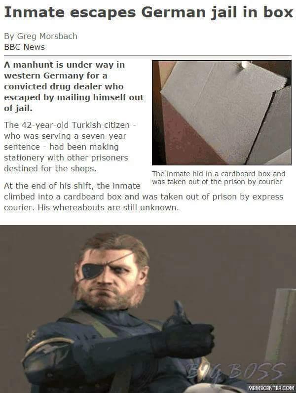 Snake approves - meme