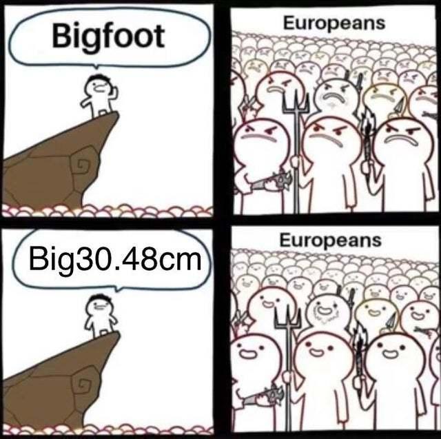 Europeans love metric system - meme