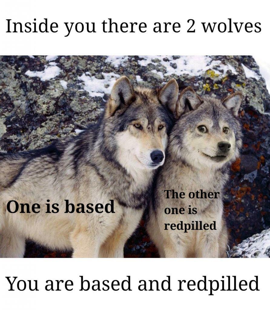 dongs in a wolf - meme