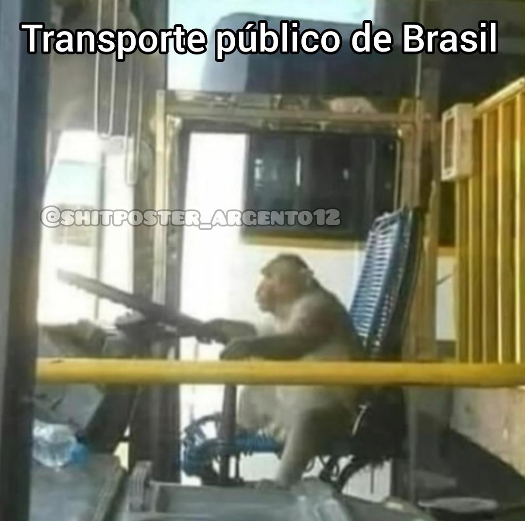 Transporte típico de Brasil XD - meme