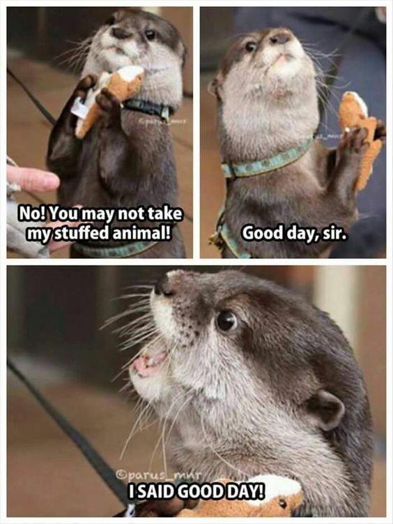 I SAID GOOD DAY! - meme