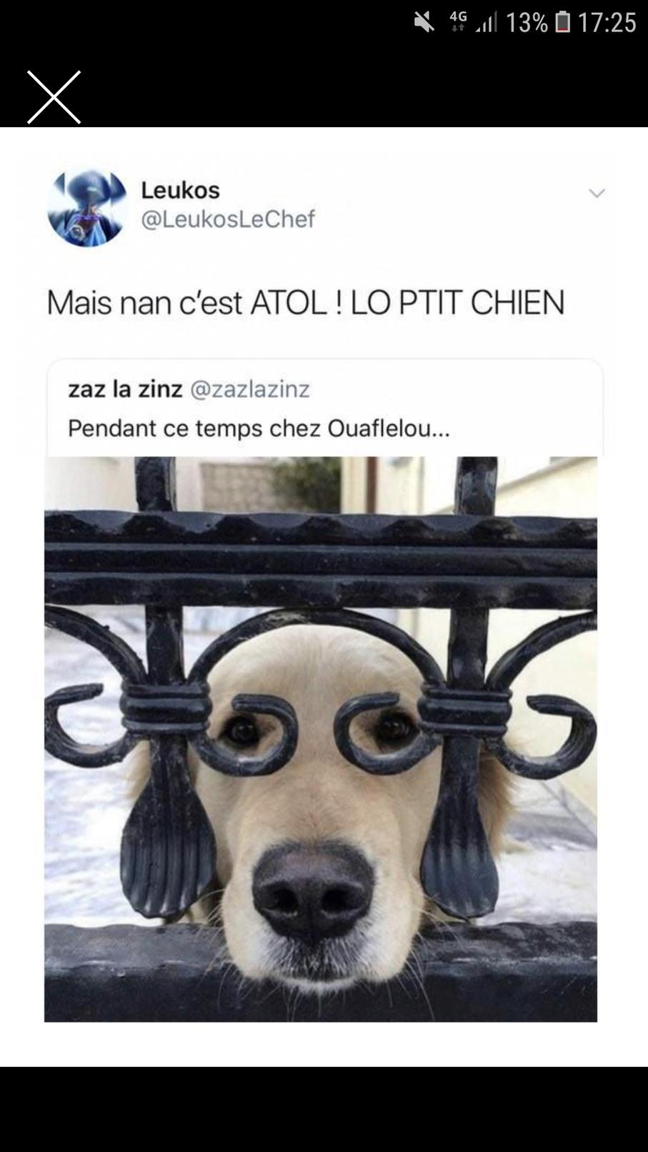Ouaflelou - meme