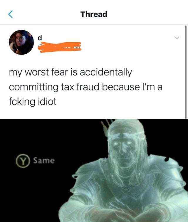 My worst fear is accidentally committing tax fraud - meme