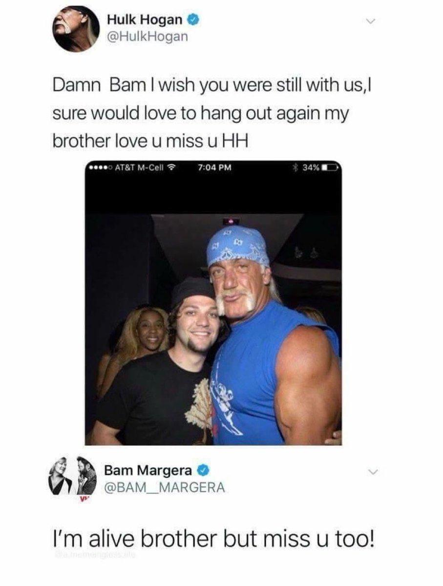 Hulk Hogan is a silly pumpkin - meme