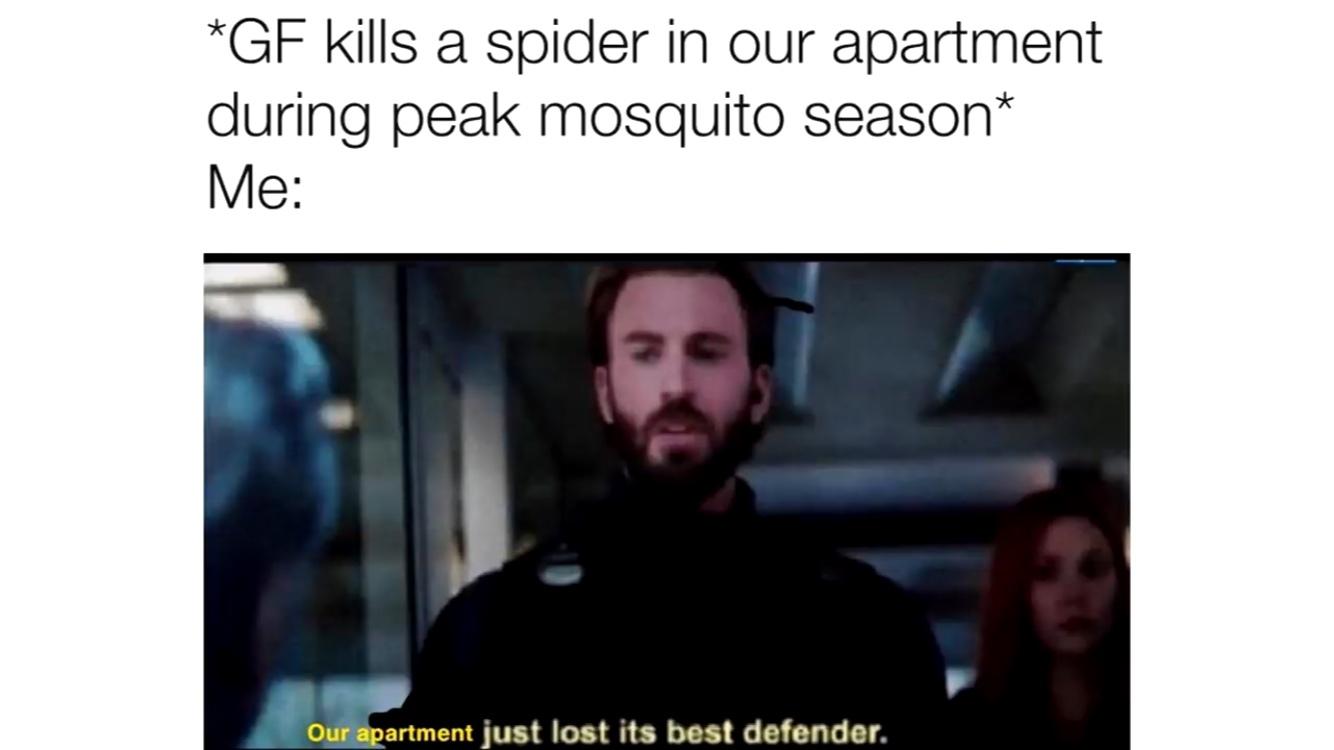 mosquito defender - meme