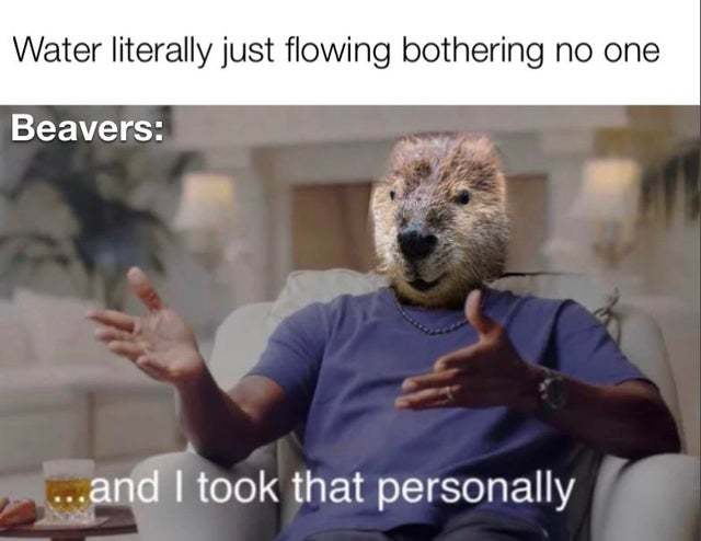 Water literally just flowing bothering no one - meme