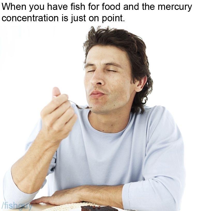 Mmmm heavy metals in the fish - meme