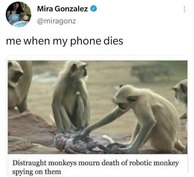 I want a robot monkey - meme