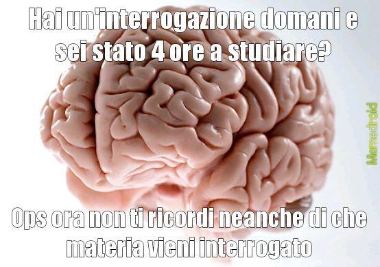 Sto stronzo del cervello - meme
