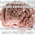 Sto stronzo del cervello
