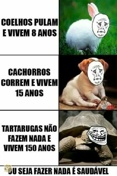 bichos - meme