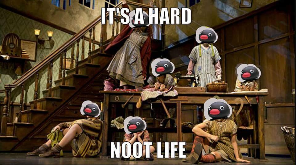 Noot - meme