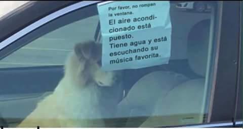 Por favor, no rompan la ventana