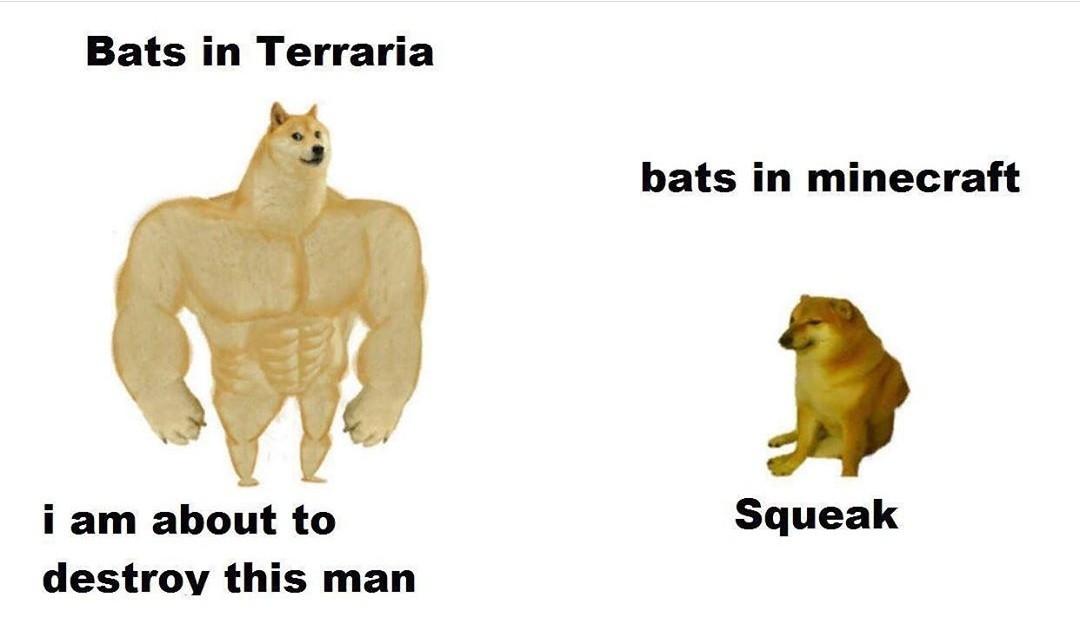 Squeak squeak - meme