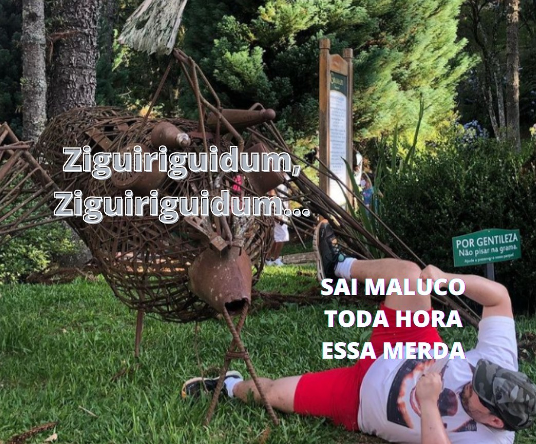 Ziguiriguidum - meme