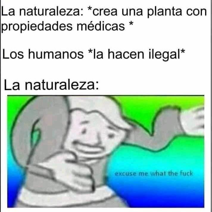 Nigha wtf - meme