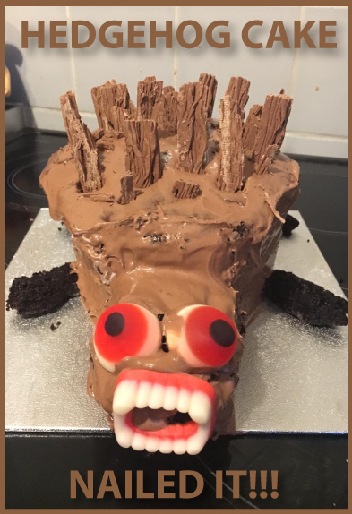 Hedgehog Cake Fail - meme