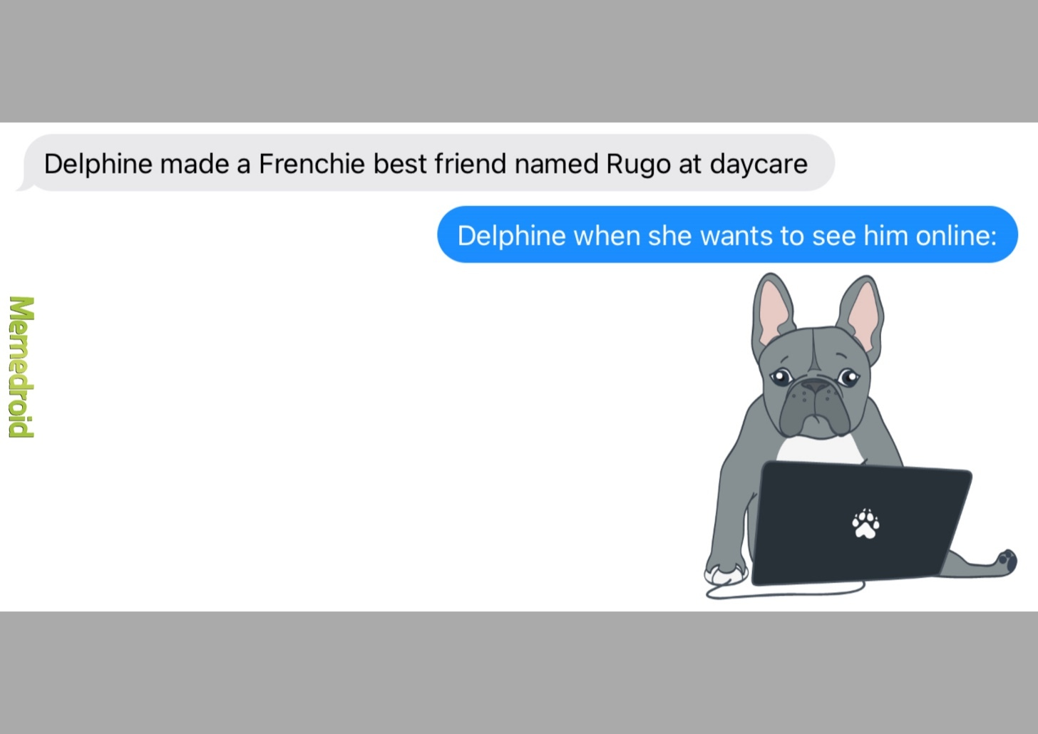 my frenchie made a BFF at daycare - meme