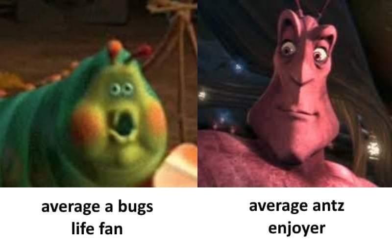 dongs in a bug - meme
