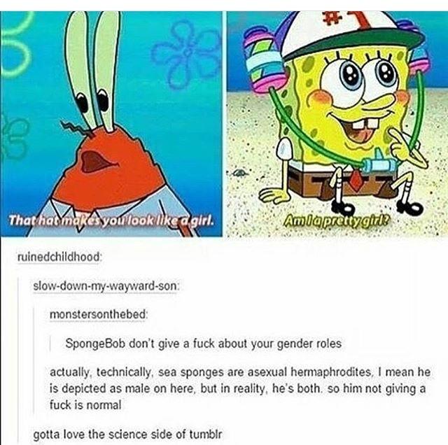 spongeve - meme
