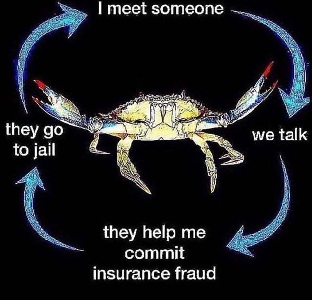 The Circle of Life - meme