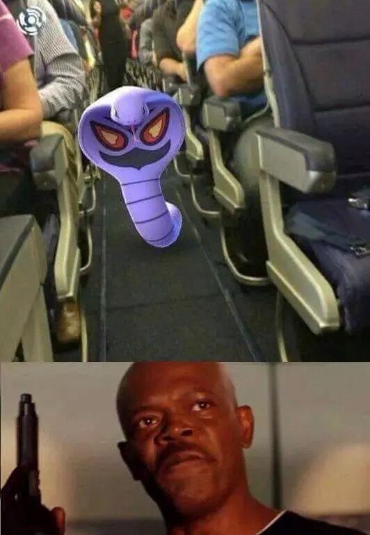 Ekans on a plane - meme