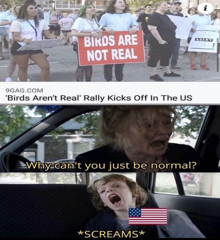 spy drones - meme