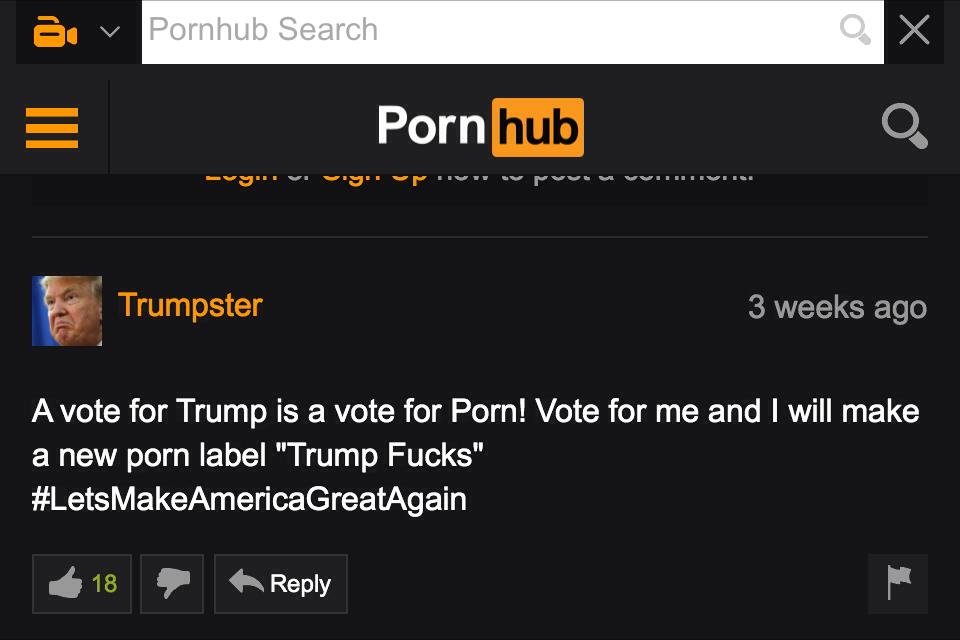pornhub comments - meme