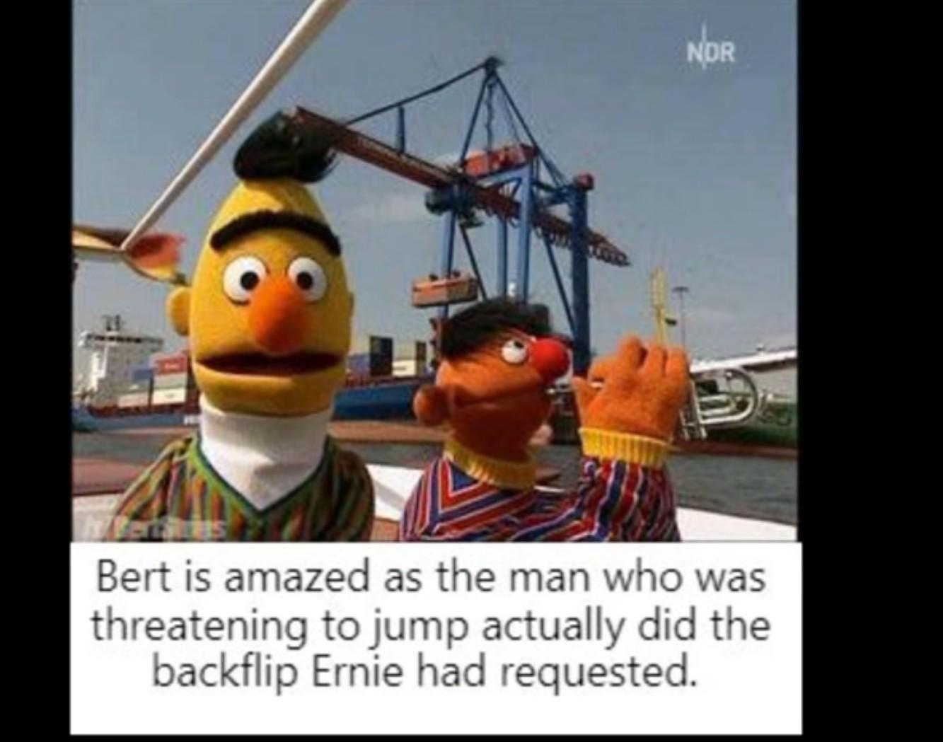 Nice flip - meme