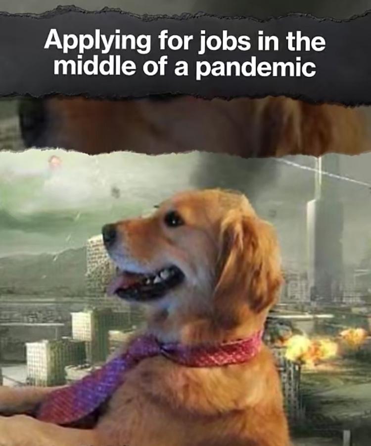 sending actual memes on August 1st