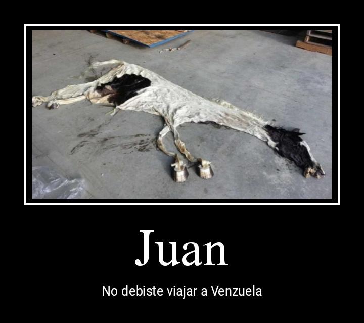Pobre Juan que parece vaca - meme