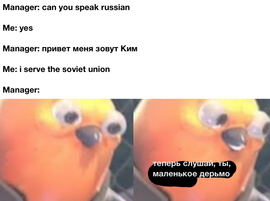 I serve the soviet union - meme