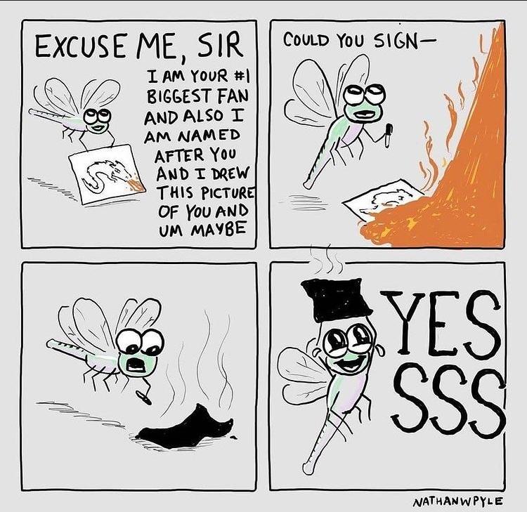 autograph - meme