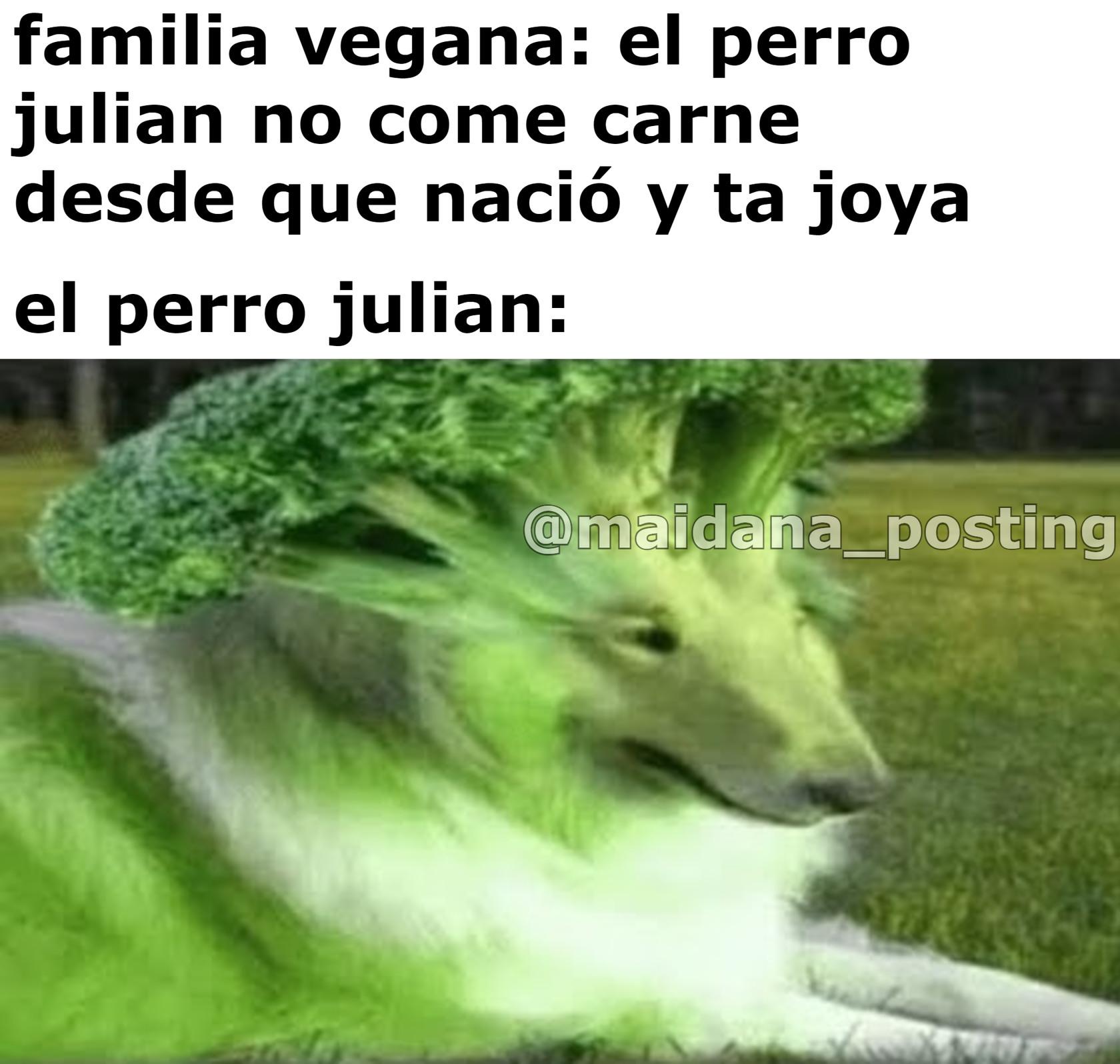 Kien es ese perro? Es el PERRO JULIAN - meme