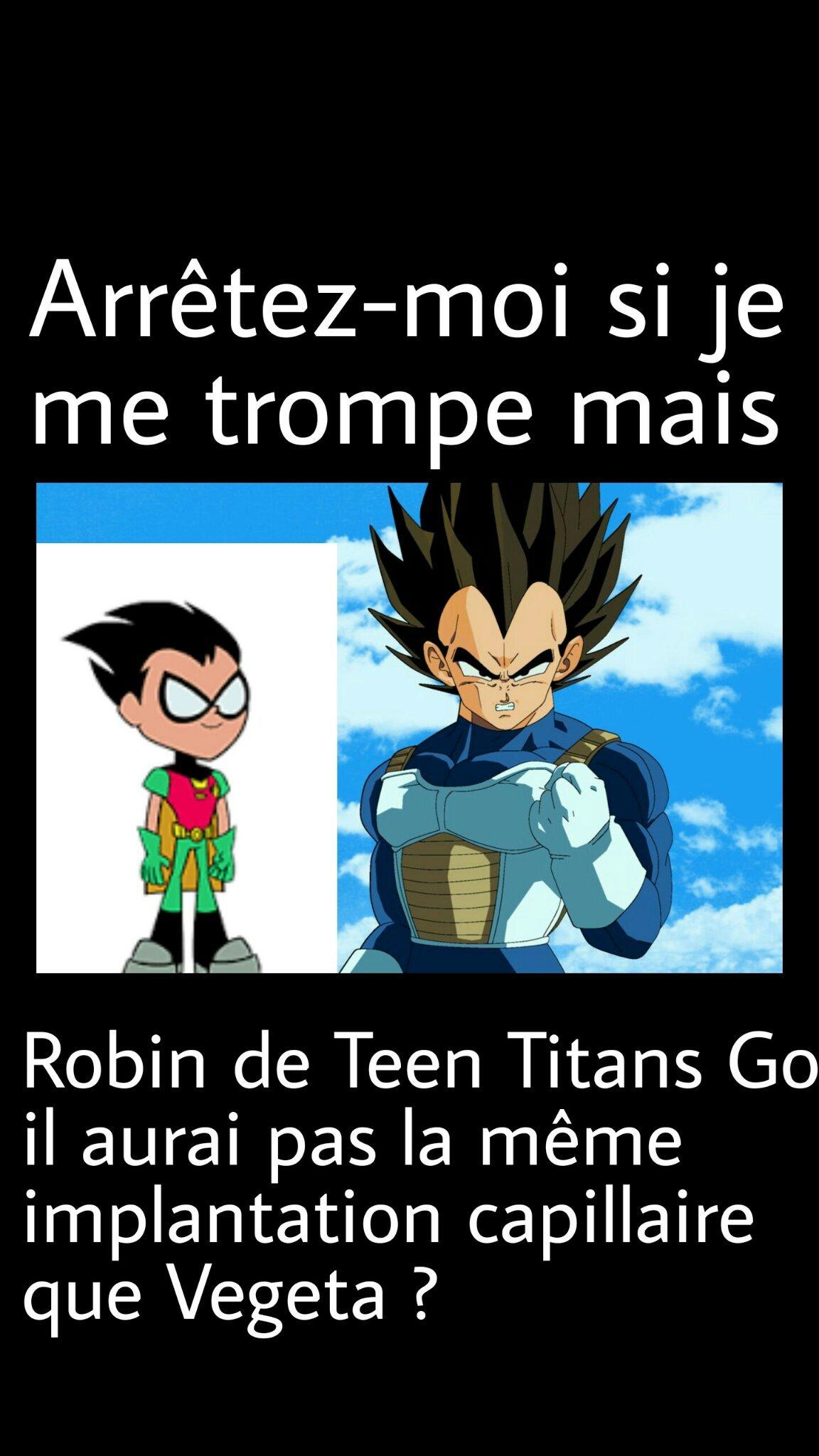 J'addore Vegeta !!! (R.I.P. Teen Titans) - meme