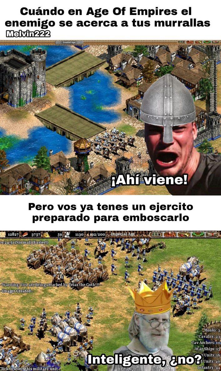 Age Of Empires II - meme