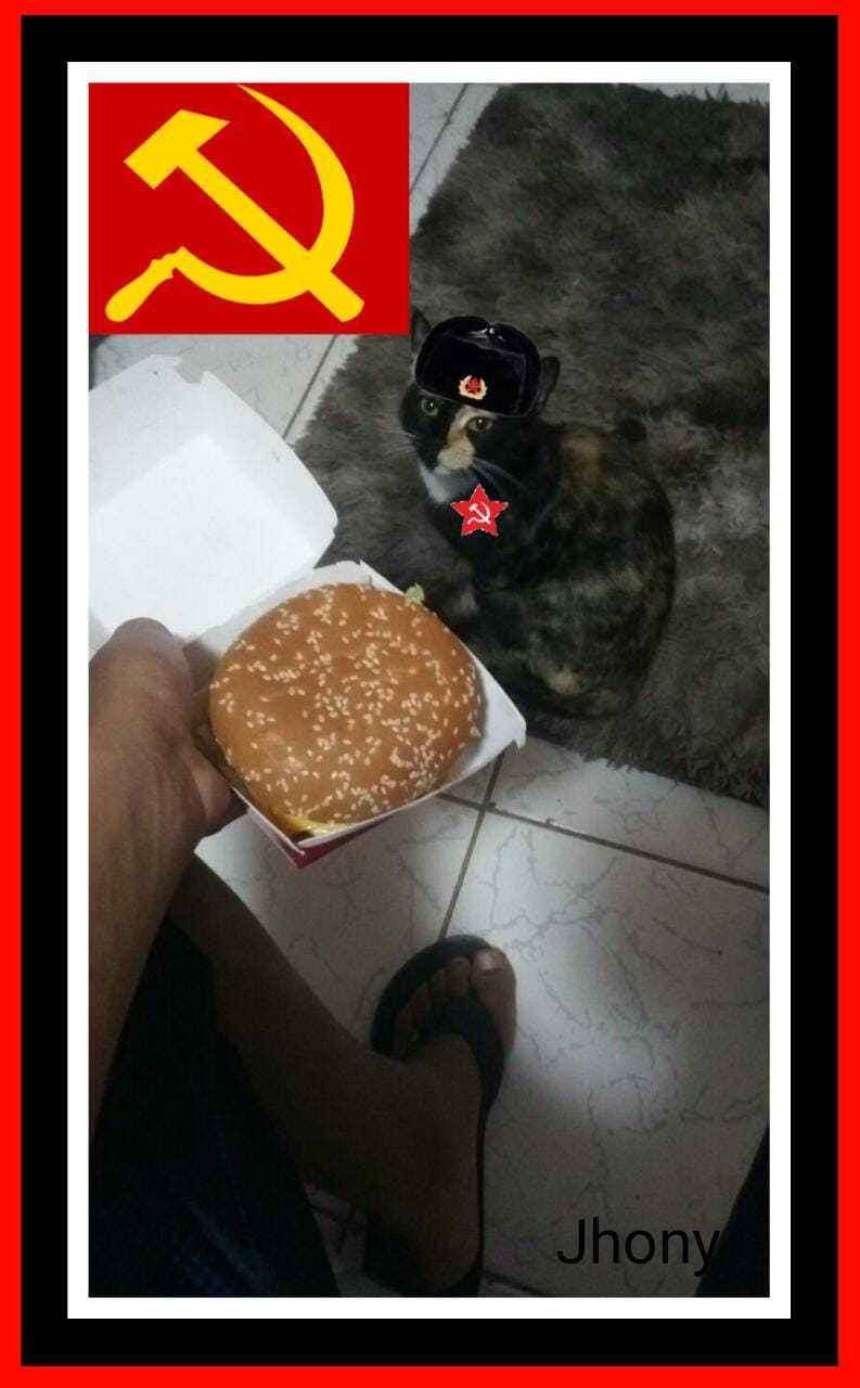 Comunismo - meme