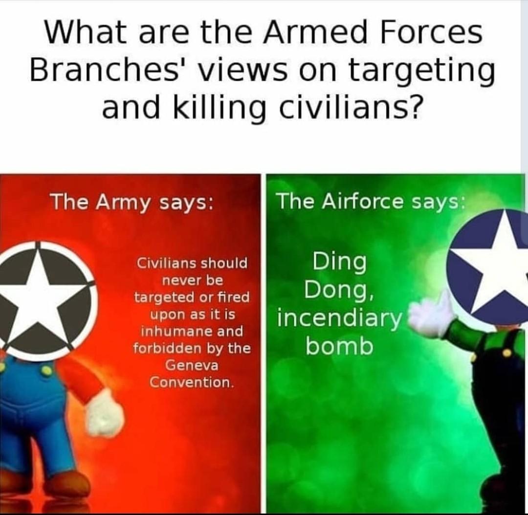 Dongs in a USAF - meme