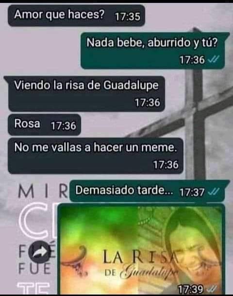 .___.XD - meme