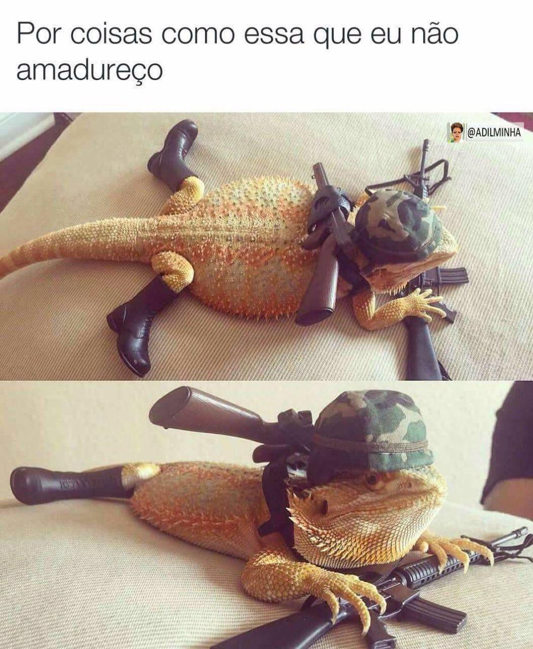 Gecko... Ba dum tss - meme