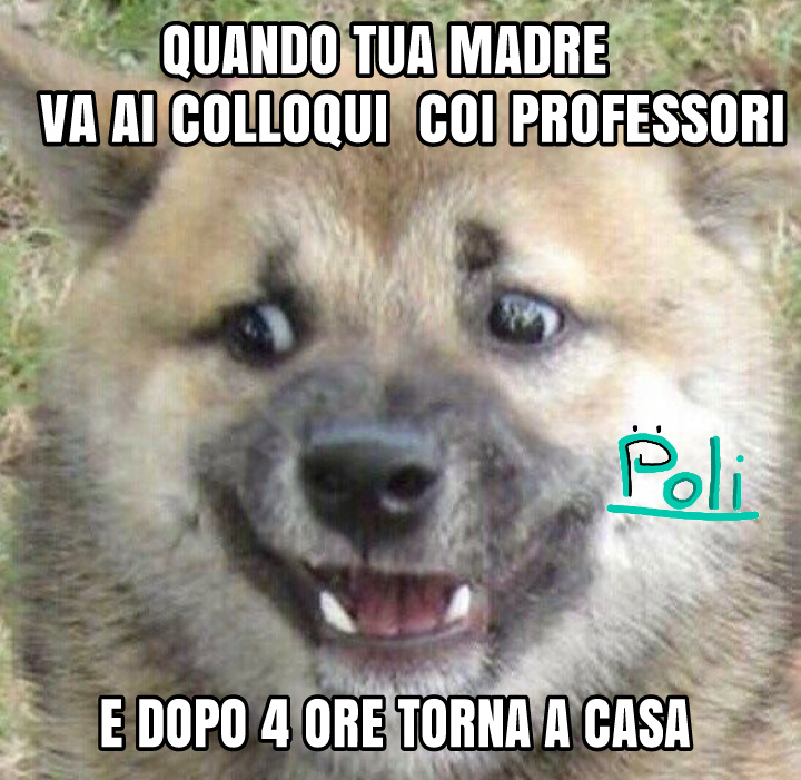 Template trovata su instagram @lapartestranadellinternet - meme