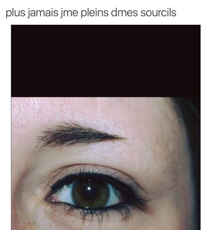 nope sourcils - meme