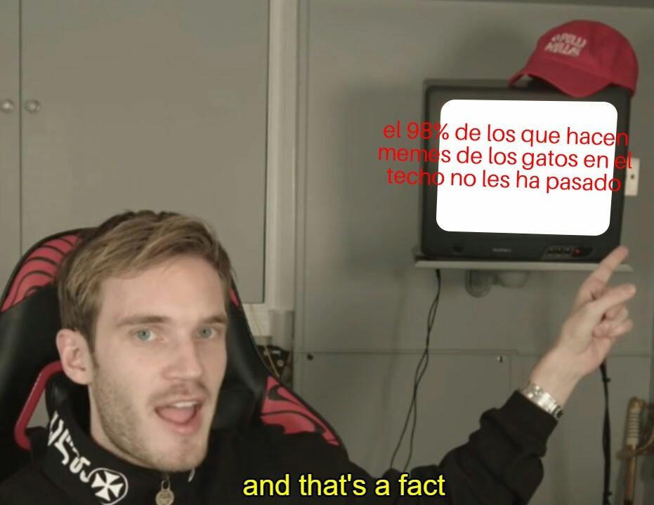 Haber niegemelo - meme