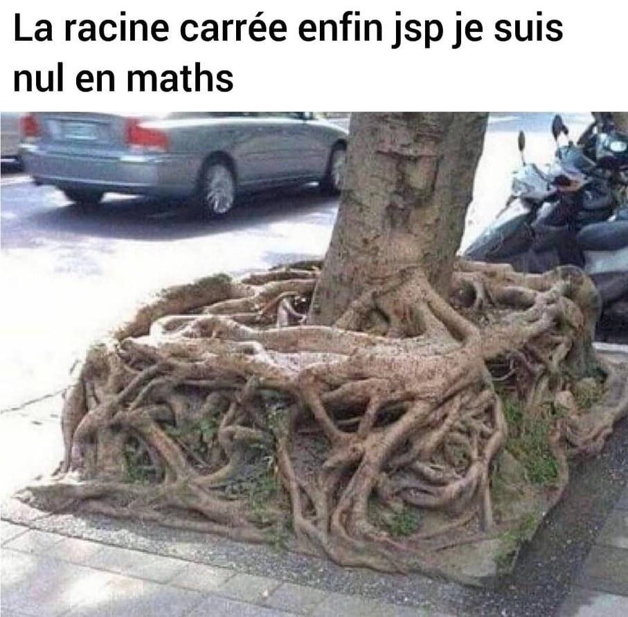 """""""1+1=3, du moins je l'espère de tout mon cœur"""" - Bernard Werber - meme"""