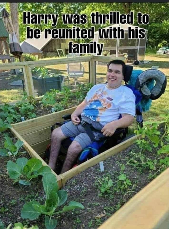 wheelie funny - meme