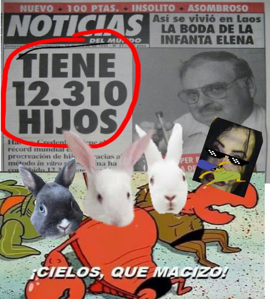 Conejo man - meme