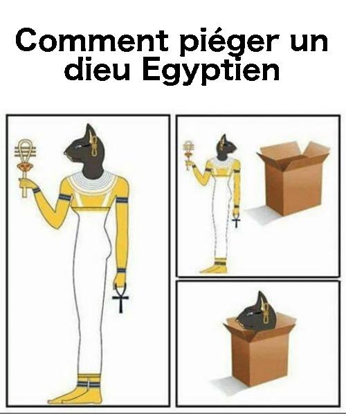 Imhotep - meme