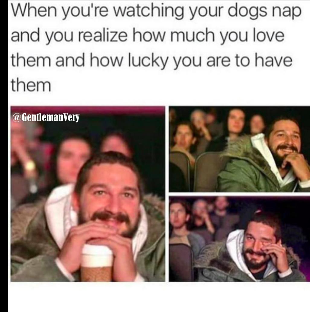 Tears me up every single time - meme